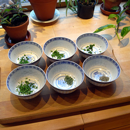 parsley-six-bowls.jpg