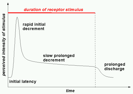 physiochemical-response-curve.png