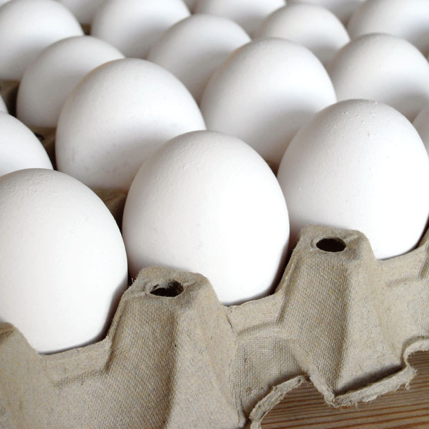 egg-tray