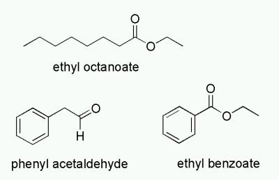 plum-gorgonzola-impact-odorants